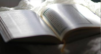 learn quran online for adult services